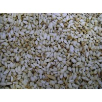 Aspir Tohumu - Kardi (50 Kg)
